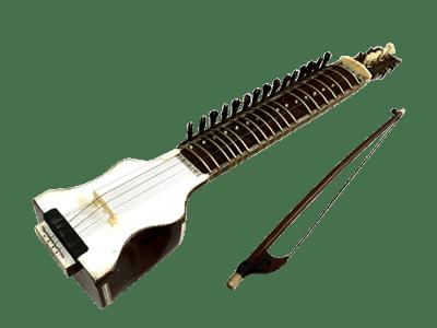 変り種弦楽器