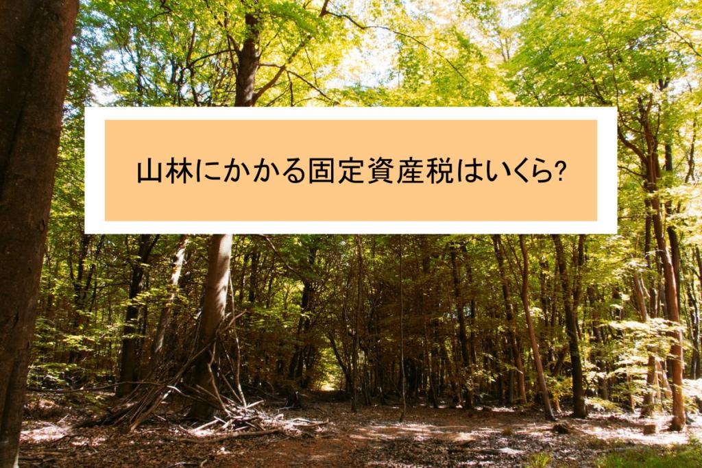 山林の土地の固定資産税について解説|3つのポイントを押さえよう